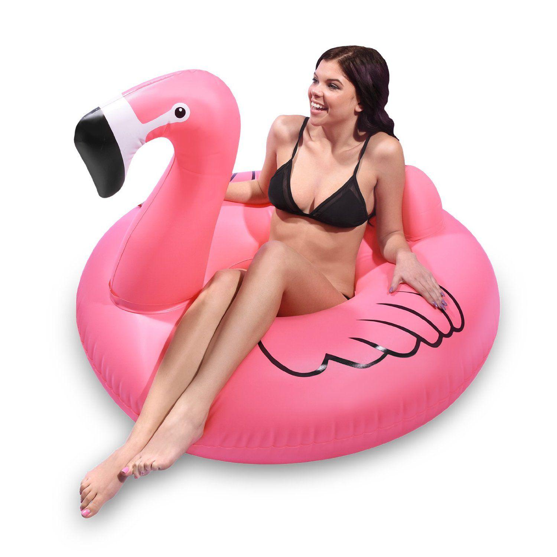 flamingo-pool