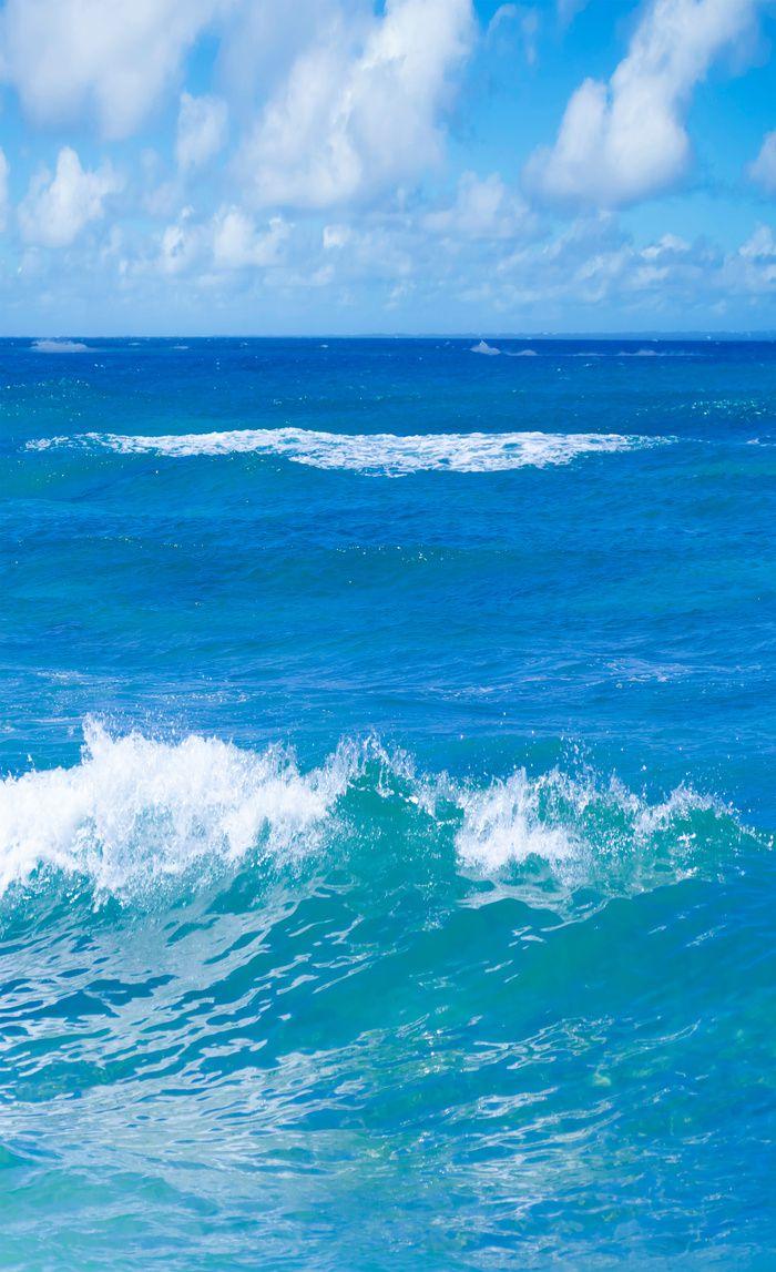 Blue Tropical Ocean Window Curtain Blackout Curtain