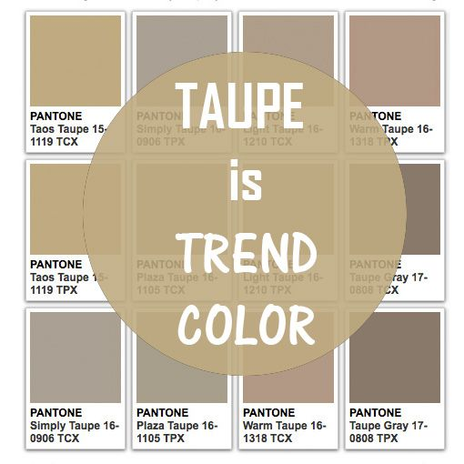 Taupe is trend color today for What is taupe color look like
